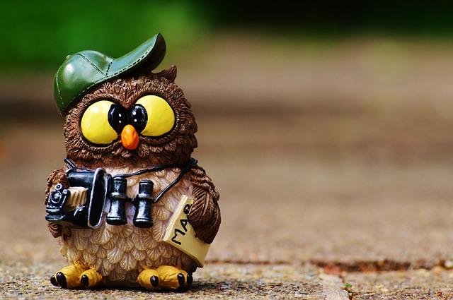 owl-964011_640