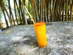 Cuba Jovellanos farm drink DSCN3469