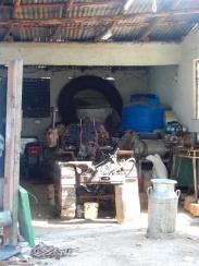 Cuba Jovellanos farm DSCN3494
