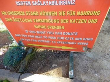 Turkey Antalya DSCN5193