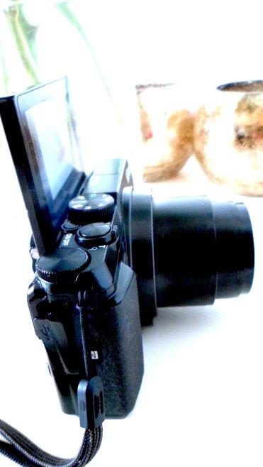 Nikon Coolpix A900 SAM_0082