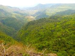 Mauritius Black River Gorges National Park DSCN9030